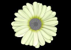 élément pour scrap : fleur