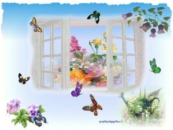 fond ecran de guilaine papillons. Black Bedroom Furniture Sets. Home Design Ideas