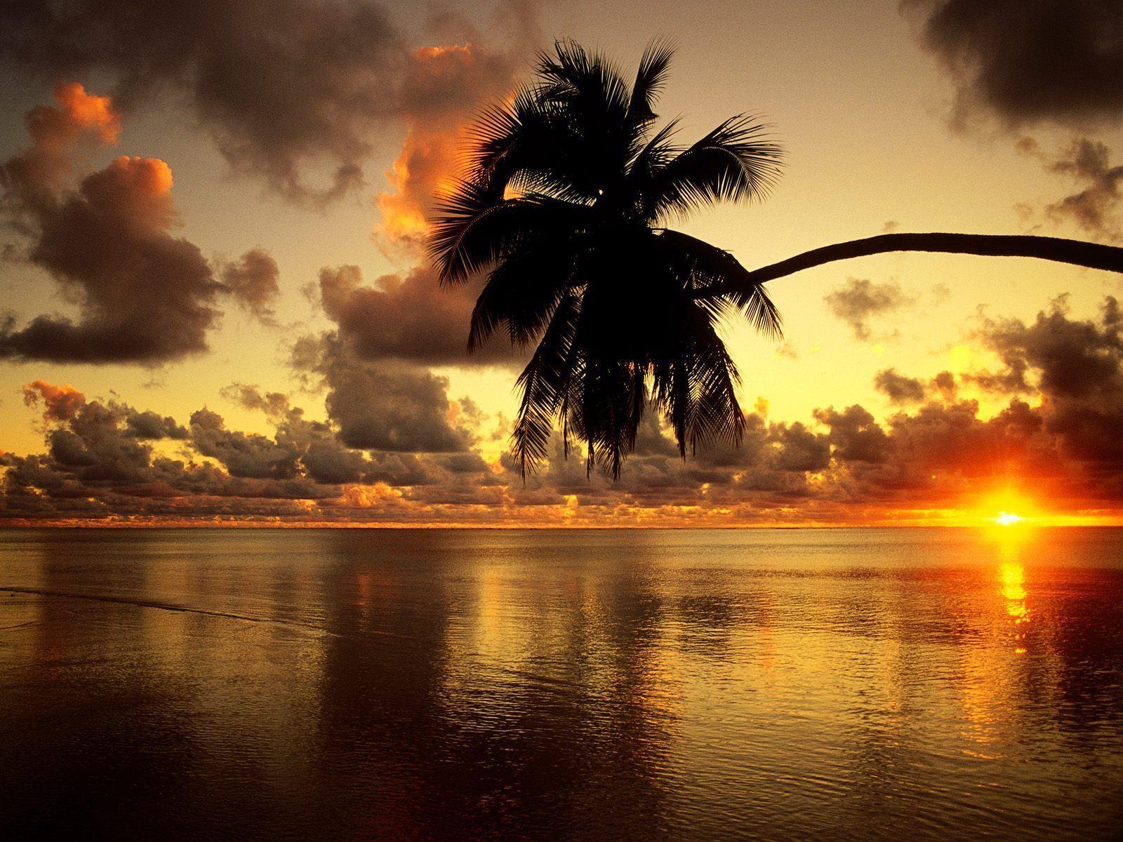 Fond d écran coucher de soleil