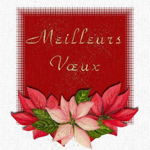 2012 : Les cartes de bons vœux reçues entre nous... - Page 3 4u3pnp51