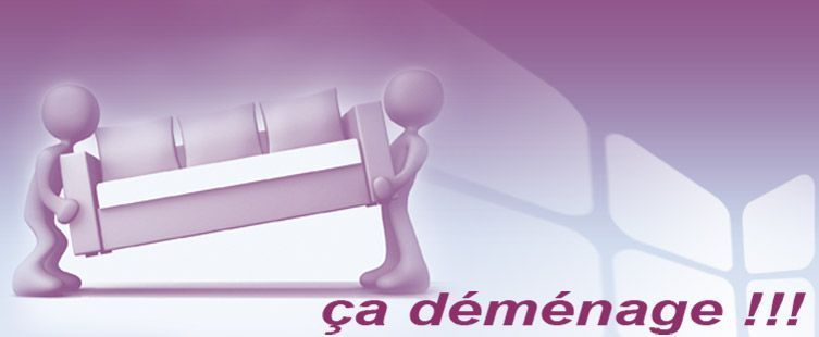 Bien connu gifs demenagement - Page 3 PS16