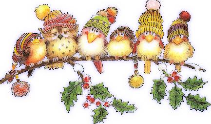 tube noël : oiseaux