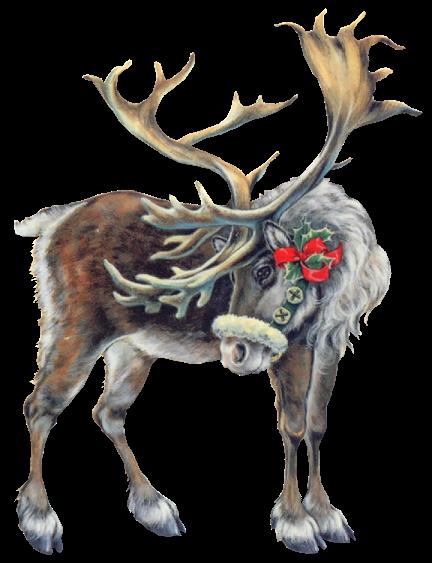 Gifs noel renne - Image rennes noel ...