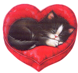 Chat coeur centerblog - Image st valentin coeur ...