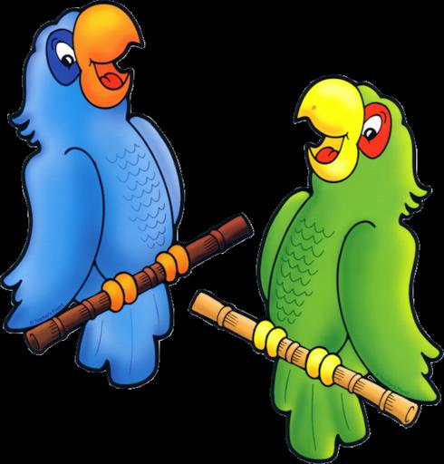 gif oiseaux