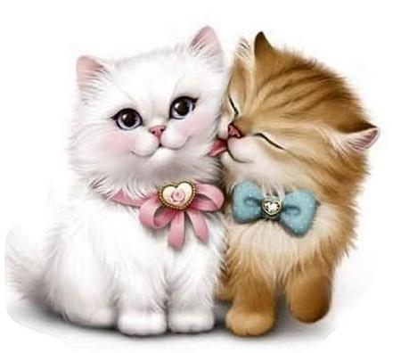 Chambres Chatroulette Gratuites alatoires salles de chat
