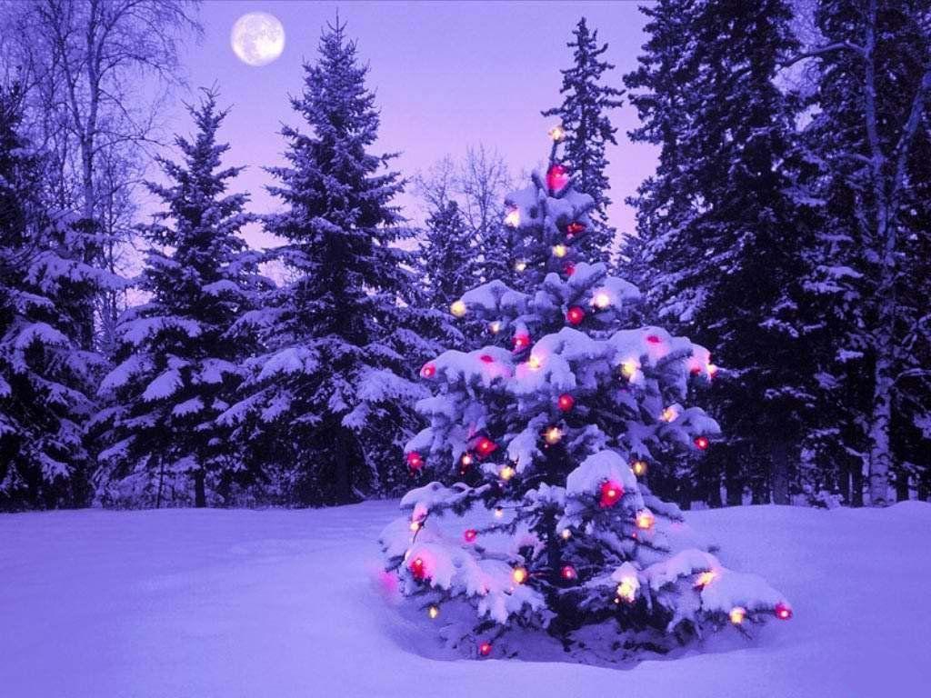 Noël : belle image de noël